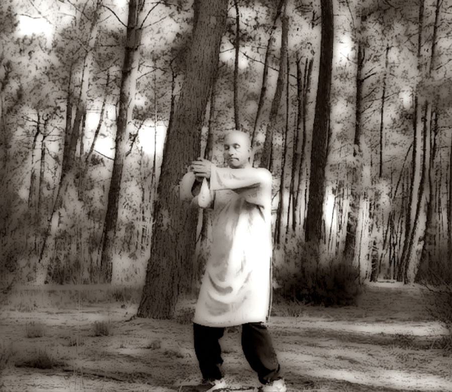#TaiChiBordeaux-ArmandFlorea-1