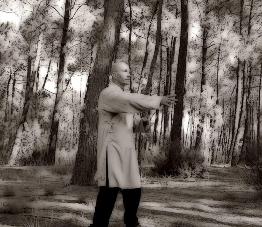 #TaiChiBordeaux ArmandFlorea Wing Chun