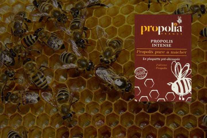La propolis – naturellement antivirale