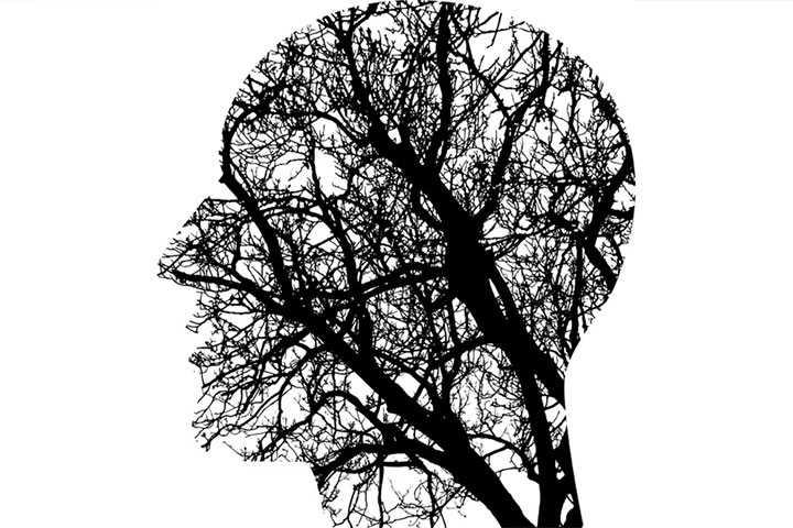 La physiologie du stress