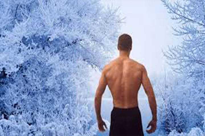 Le métabolisme oxydatif des tissus adipeux bruns contribue aux dépenses énergétiques lors d'une exposition au froid aiguë chez l'homme