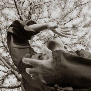 # Armand Florea WCMT Wudang Tai Chi Wing Chun Kung Fu7