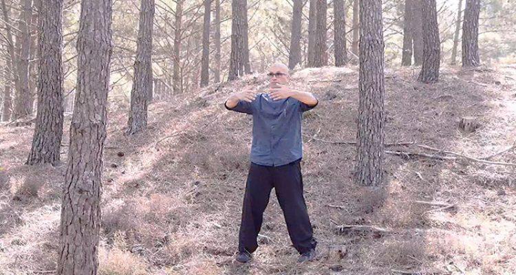 Qi-Gong-Armand Florea Bordeaux Kung Fu